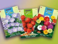 بذر گل ایرانی از 3000 تومان