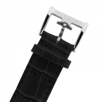 قیمت ساعت مچی مردانه ارنشا مدل ES-8023-02