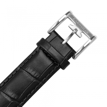 قیمت ساعت مچی مردانه مدل ES-8060-01