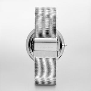 قیمت ساعت مچی آنالوگ اسکاگن مدل SKW2004