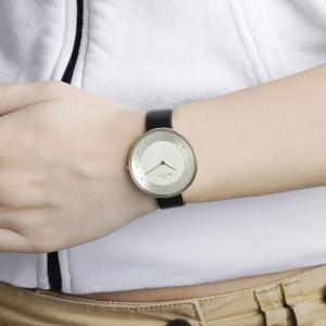 قیمت ساعت مچی آنالوگ اسکاگن مدل SKW2262