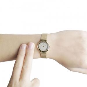قیمت ساعت مچی آنالوگ اسکاگن مدل 456SGSG