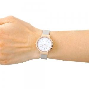قیمت ساعت مچی آنالوگ اسکاگن مدل SKW2481