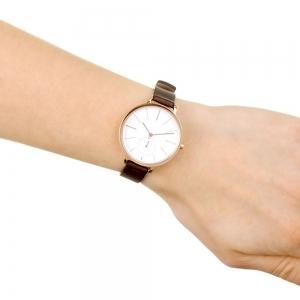 قیمت ساعت مچی آنالوگ اسکاگن مدل SKW2356