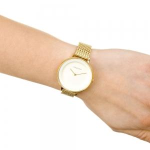 قیمت ساعت مچی آنالوگ اسکاگن مدل SKW2333