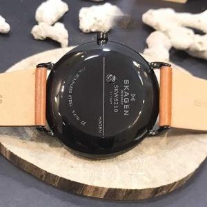 قیمت ساعت مچی آنالوگ اسکاگن مدل SKW6210