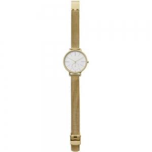 قیمت ساعت مچی آنالوگ اسکاگن مدل SKW2436