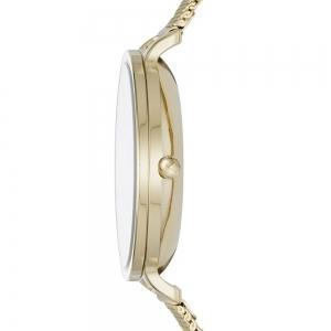 خرید ساعت مچی آنالوگ اسکاگن مدل SKW2436
