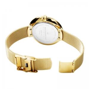 ساعت اسکاگن مدل SKW2140