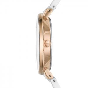 ساعت اسکاگن مدل SKW2314