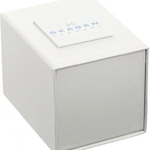 ساعت اسکاگن مدل SKW2340