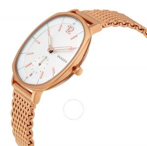 ساعت اسکاگن مدل SKW2373