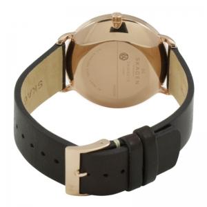 ساعت اسکاگن مدل SKW6180