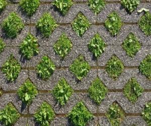 Grasscrete و کاهش دمای اثر جزیره حرارتی