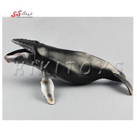 فیگور حیوانات وال figure of whale