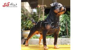 قیمت و خرید فیگور حیوانات سگ رتوایلر fiqure of dog
