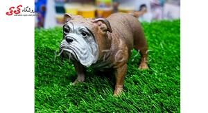 قیمت و خرید ماکت و مجسمه سگ بولداگ انگلیسی
