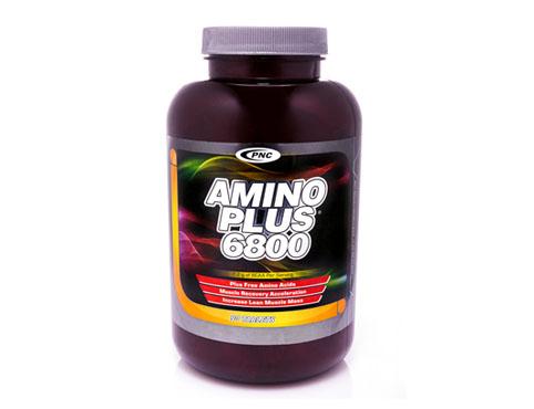 آمینو 6800