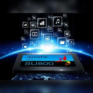 Adata SSD SU800