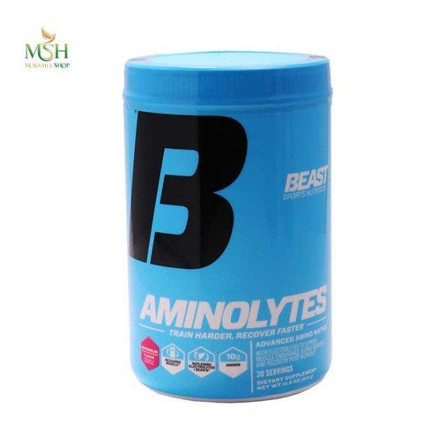 آمینو لایتس بیست اسپرت | Beast Sports Aminolytes