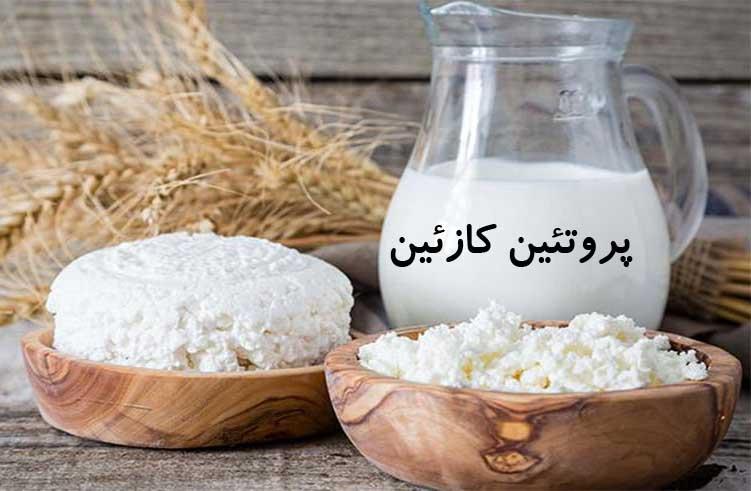 پروتئین کازئین: روش مصرف،نکات ویژه،تداخل دارویی و ارزش غذایی