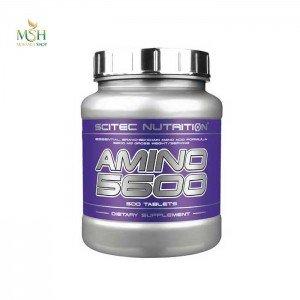 آمینو 5600 سایتک 500 عددی