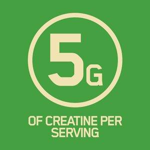 5 گرم کراتین مونوهیدرات 100٪ خالص-  یکی از مواد مکمل که بیشتر مورد  مطالعه قرار گرفته است