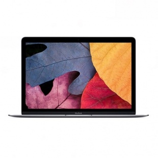 Apple MacBook MJY32 12 Inch Laptop