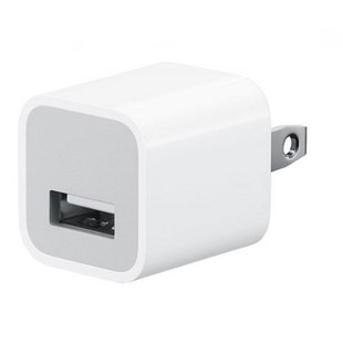 Apple MD810 5W USB Charger