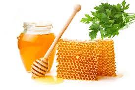 عسل گشنیز نیم کیلویی