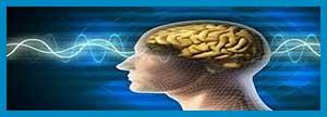 امواج الکترومغناطیس و بیماری پارکینسون