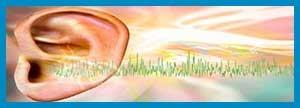 رابطه میدان های الکترومغناطیس و وزوز گوش