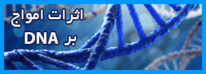 امواج الکترومغناطیسی و عملکرد صحیح سلولی و DNA