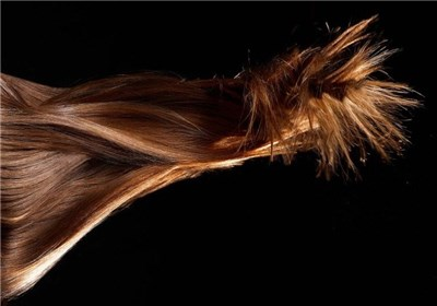 افزایش سرعت رشد مو با این ۳ عصاره