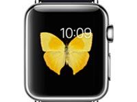 لوازم جانبی (Apple WATCH (42mm