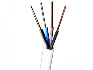 کابل مفتول کولری 1.5*4 البرز الکتریک نور