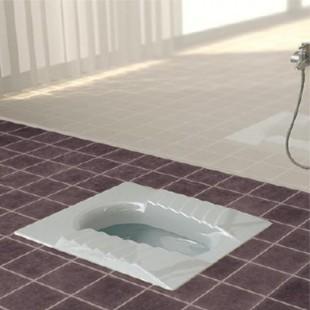 توالت زمینی گلسار مدل مارانتا