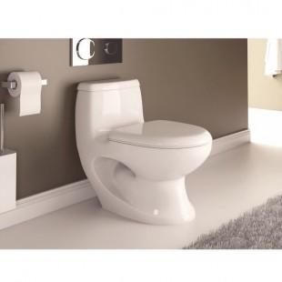 توالت فرنگی سینا چینی مدل آرالیا