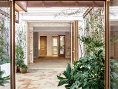 استفاده از گیاهان آپارتمانی در دکوراسیون خانه