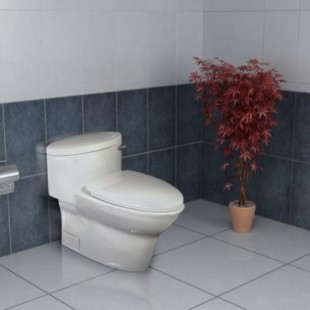 توالت فرنگی گلسار مدل کاکتوس