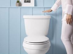 کوچکترین سایز آکس توالت فرنگی