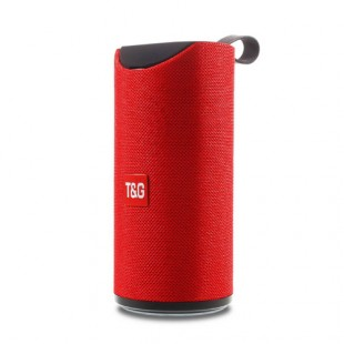 T And G Tg-113 Portable Bluetooth Speaker