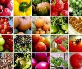 با مصرف این مواد غذایی، روحیه بهتری دارید