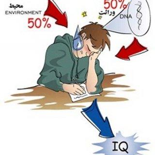 IQ يعنی چی؟