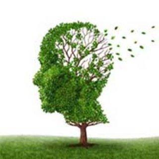 چه عواملی باعث کاهش حافظه و فراموشی می شود؟