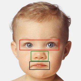مغز انسان چهرههای جذاب را ترجیح میدهد