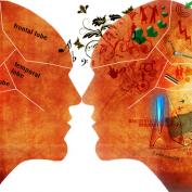 روانشناسی مصرف کنندگان برای بازاریابی موثر