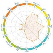 نمودارهای فردی و تيمی