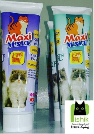 مالت گربه مکسی