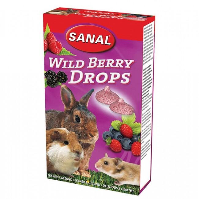 مکمل غذایی و تشویقی مولتی ویتامین سانال با طعم توت وحشی مخصوص جوندگان